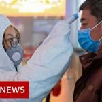 Scientists seek for coronavirus vaccine – BBC Information