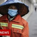 China coronavirus: Beijing cancelled Chinese language New Yr celebrations – BBC Information
