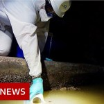 Coronavirus: Monitoring new outbreaks within the sewers – BBC Information