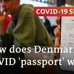 Is Denmark's coronavirus 'passport' a prototype for European journey? | COVID-19 Particular