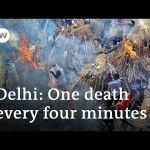 India's hospitals swamped as every day COVID circumstances method 380,000 | DW Information