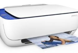 HP DeskJet 3636 Driver & Manual Download