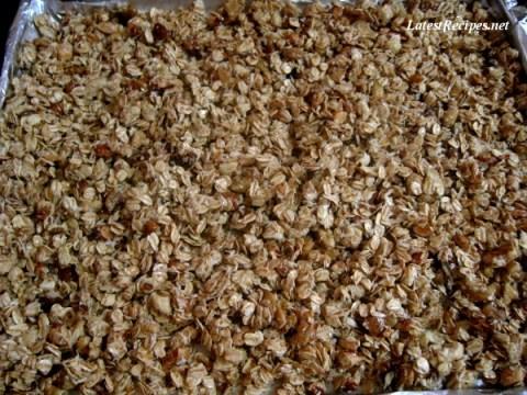 granola_oatmeal_honey_nut