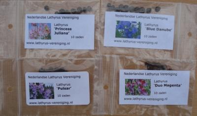 lathyrus-zakjes-zaadklein