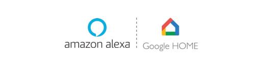 Asistentes virtuales Amazon y Google