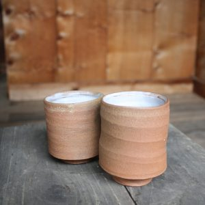 Earthenware Tumblers | Set of 2