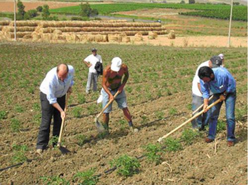 braccianti-agricoli-82468237