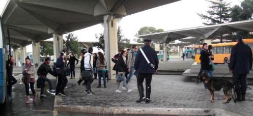 controlli-antidroga-carabinieri-latina-478722