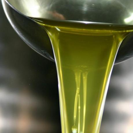 olio-extravergine-latina-24ore-679081