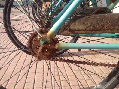 biciclette-noleggio-latina-24ore-2