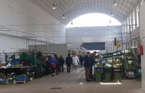 mercato-coperto-ex-consorzio-agrario-latina-24ore-02