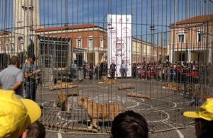 leoni-piazza-popolo-latina