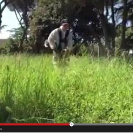 video-taglio-erba-latina