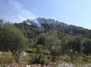 incendio-monti-maenza-carpineto-colline