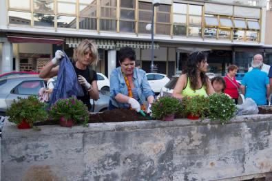latina-fiori-palazzo-m-2
