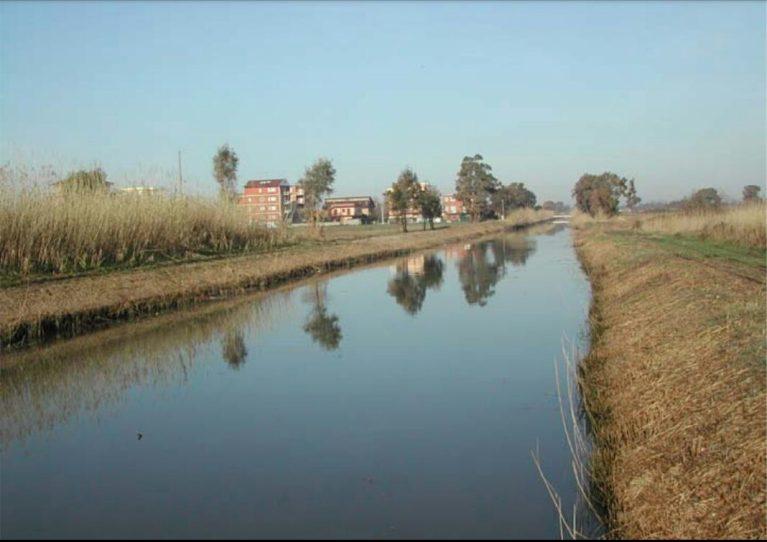 canale-colmata