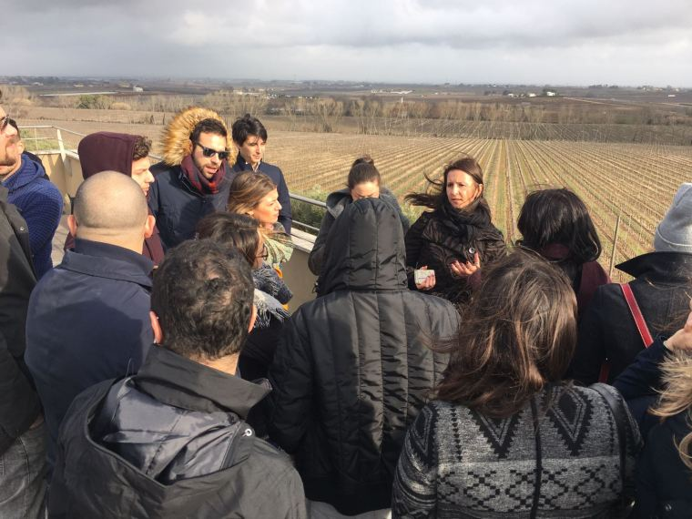 Food and Wine Management lungo la Strada del Vino della provincia di Latina (1)