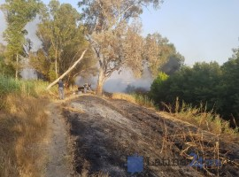 incendio-canale-latina-morto-immigrato-1