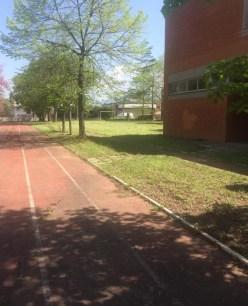taglio-erba-comune-latina-3