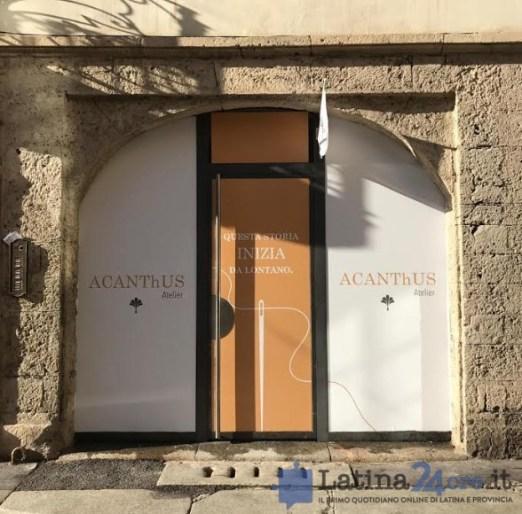 acanthus-milano-latina