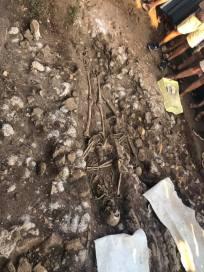 scheletro-resti-umani-satricum-latina-3