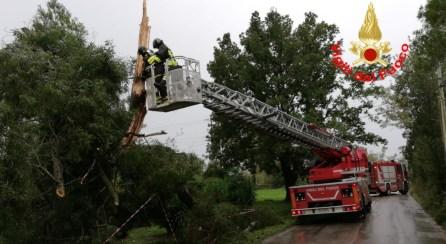 albero-caduto-vigilifuoco-2