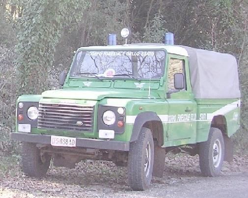 forestale_auto_latina