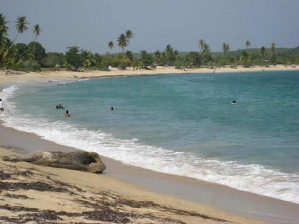Sun Bay, Vieques Best Beaches