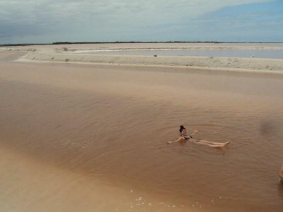 things to do in Playa Del Carmen, Rio Lagartos Dead Sea