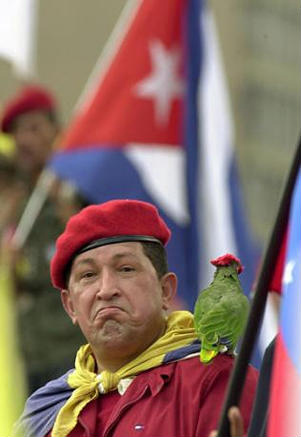 "The image ""https://i2.wp.com/www.latinamericanstudies.org/venezuela/chavez-parrot.jpg"" cannot be displayed, because it contains errors."