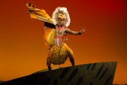 Casting has been announced for the Orlando return engagement of Disney's The Lion King