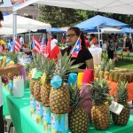 The Taste  of Puerto Rico Festival takes place June 10th at Denver's Civic Center Park. Photo Latin Life Denver Media