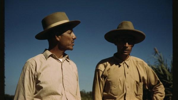 Sugar cane workers near Rio Piedras, Puerto Rico, 1941 (Jack Delano/Public Domain)