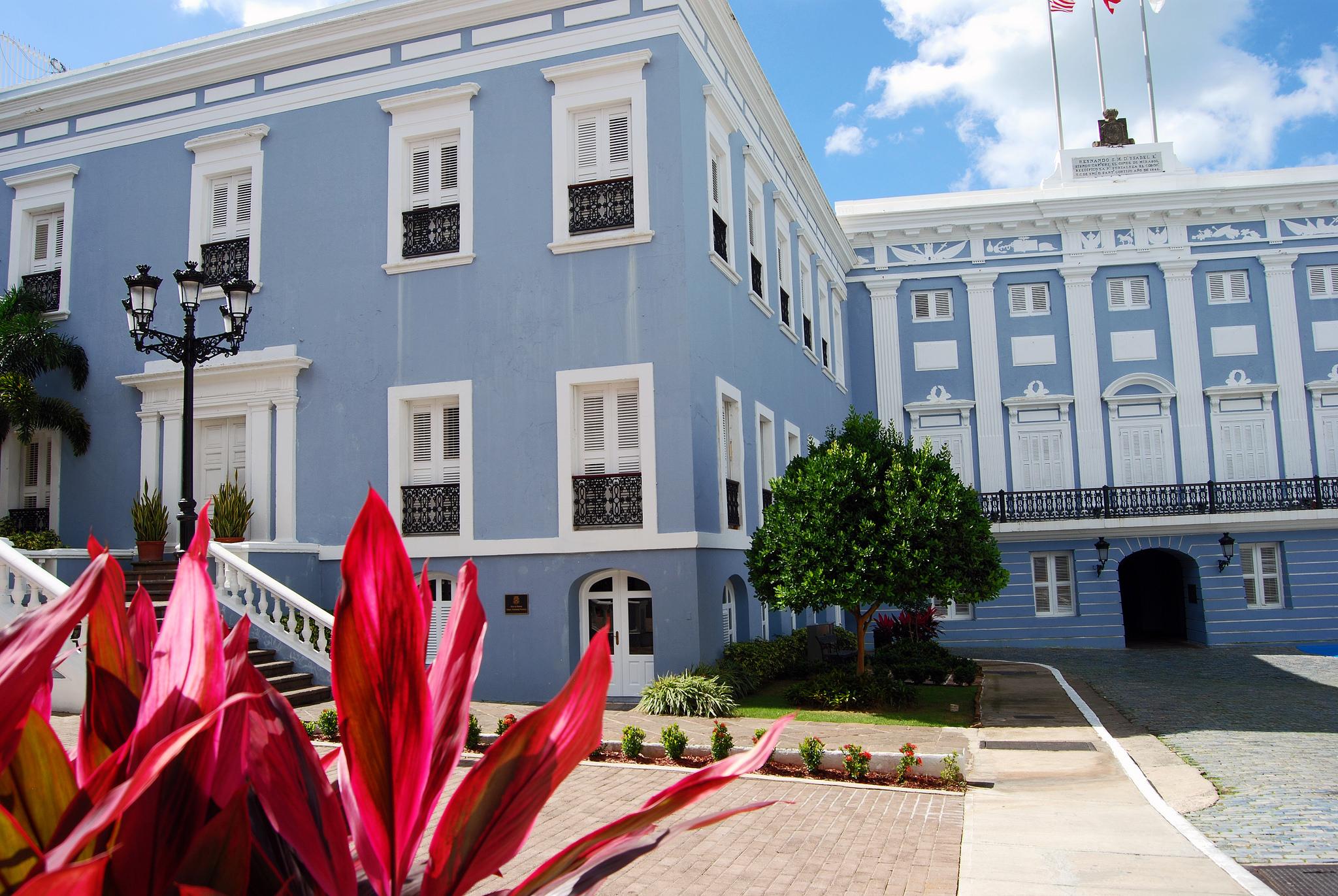 University Must See Films at Puerto
