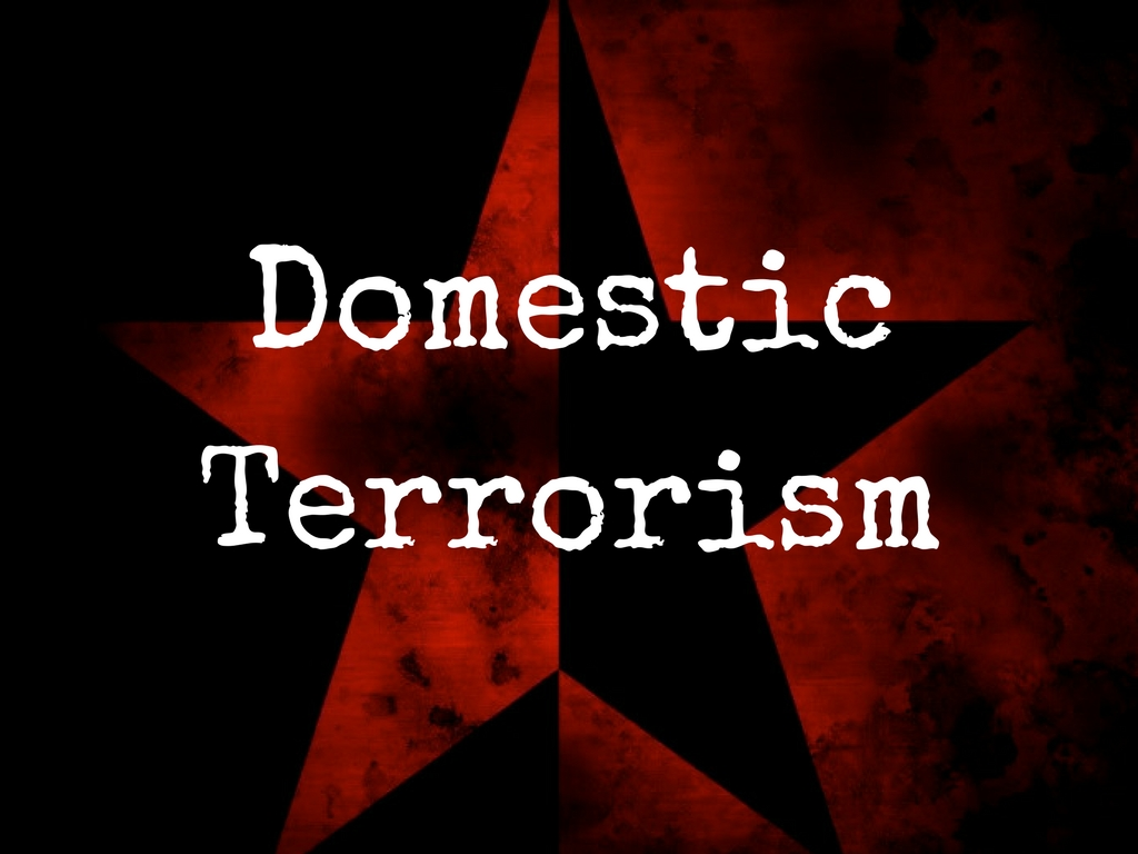 domestic terrorism overlooked