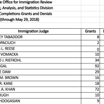Every Immigration Judge's Asylum Grants and Denials From 2014 to 2018