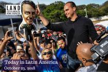 Critics Call Bolsonaro's and Son's Comments Undemocratic
