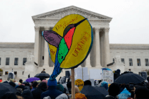 DACA Heads to the Supreme Court: 6 Essential Reads