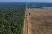 Brazil's Amazon at a Crossroads