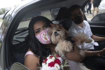Brazilians Say 'I Do' at Drive-Thru Weddings to Avoid Virus