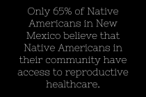 Attitudes Toward Reproductive Health Policy Among Native Americans