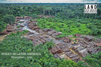 Brazil Reports Record Amount of Deforestation