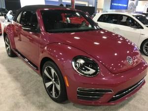 2016-09-10-pink-beetle