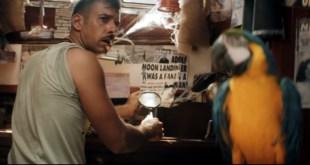 Francesco Gabbani lança o clipe de Pachidermi e Pappagalli