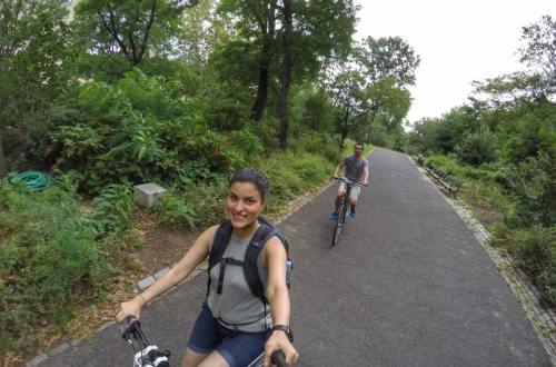 Central Park: O que fazer?