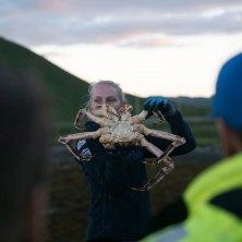 King crab safari Honningsvåg-Alexander Benjaminsen - VisitNorway