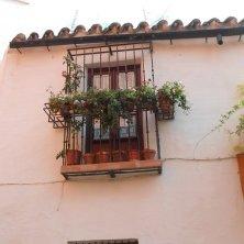 angoli fioriti Barrio