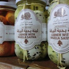 Labneh, yogurt stagionato e aromatizzato con le erbe spontanee del parco
