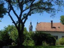 campanile visto da Tonhof