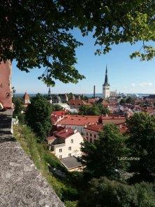 Tallinn dal cortile del Re danese